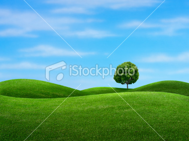 stock-photo-3354118-spring-day