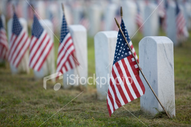 stock-photo-2020930-flags-for-the-fallen